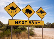 Australian driving 30 Tips for First Time Travelers In Australia