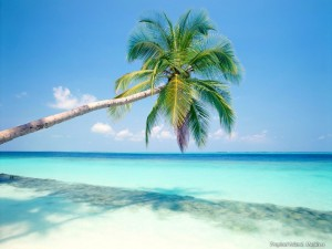 caribbean 300x225 The Attractive Caribbean Vacation Packages