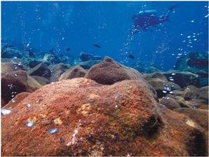 Banua Wuhu Underwater Volcanoes Indonesia
