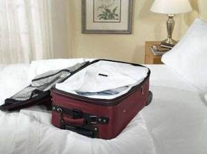 bed bugs luggage 300x224 Practical Tips to Protect Yourself from Bed Bugs While Traveling