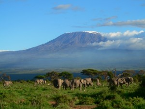 mount kilimanjaro 300x225  Adventure Activities In Africa