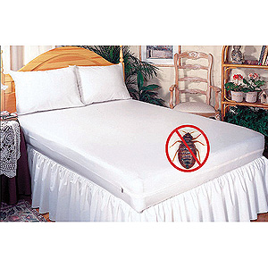 no bed bugs room Practical Tips to Protect Yourself from Bed Bugs While Traveling
