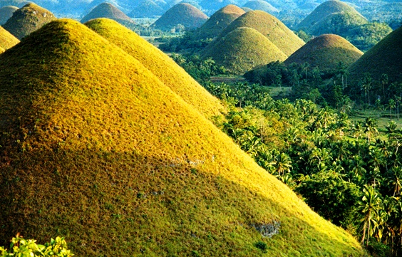 Bohol Chocolate Hills in Philippines