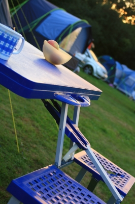 camping outdoors without pests How to Avoid Bugs and Pests While Traveling or Camping Outdoors