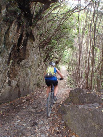 bike trails new zealand