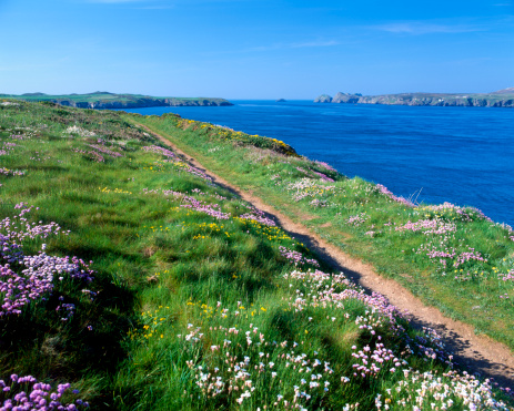 The Coast Path of Pembrokeshire Top UK Walking Destinations
